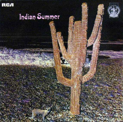 indian sum